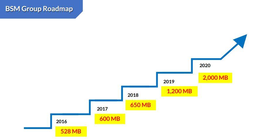 BSM-Growth target