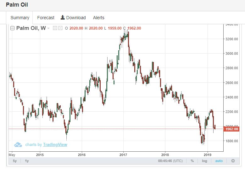 OCEAN-Palm oil price